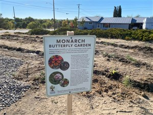 Butterfly and pollinator garden brings new life, hope to Madras UMC
